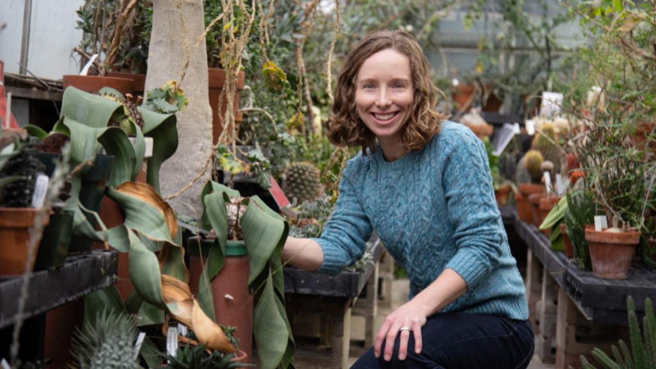 Assistant Professor Jennifer Gremer, Department of Evolution and Ecology, studies how climate change influences the life history of wildflowers.
